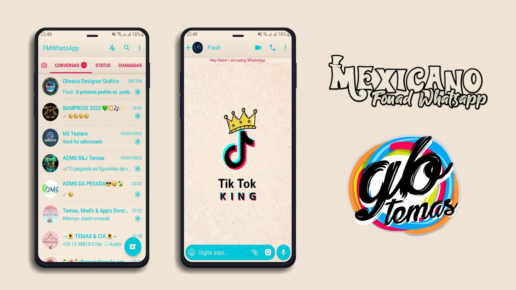 Tema Fouad Whatsapp - TikTok | GB TEMAS